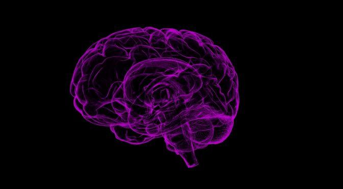 Hjernetrening med Kaja Nordengen